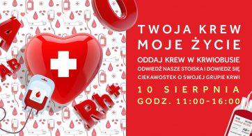 Oddaj krew i podaruj życie – akcja krwiodawstwa w Atrium Plejada